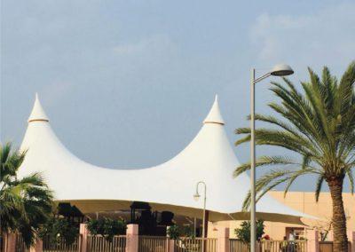King Abdullah University of Sciences & Technology (KAUST)